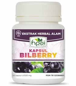 Produk Bilberry Kapsul HNI asli. Posted by Susara Indra Buani